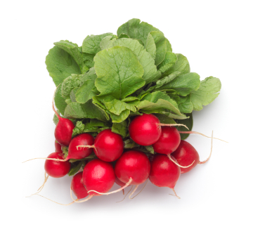 Bunch-of-radishes