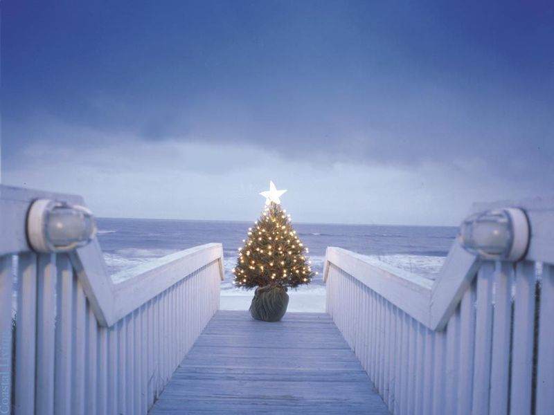 Christmas-beach-blue-tree