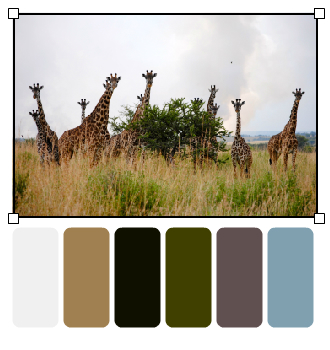 Giraffe palette